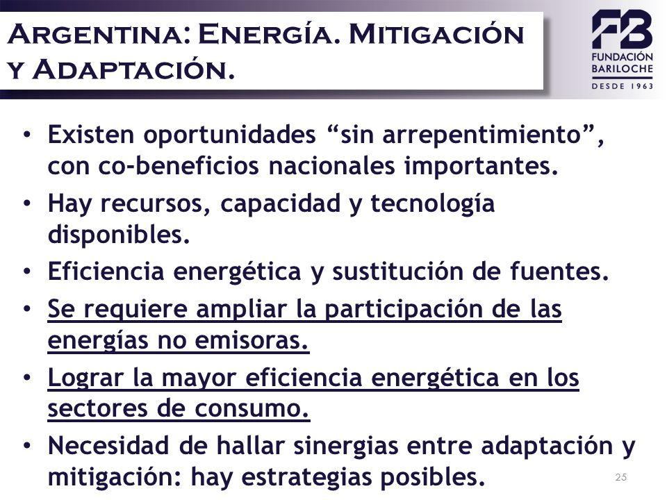 Argentina: Energía. Mitigación y Adaptación.