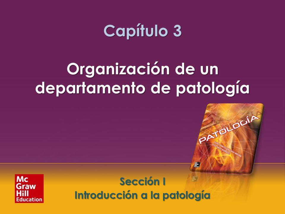Capítulo 3 Organización de un departamento de patología