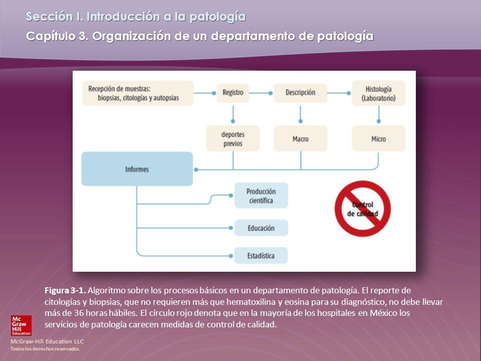 Figura 3-1. Algoritmo sobre los procesos básicos en un departamento de patología.