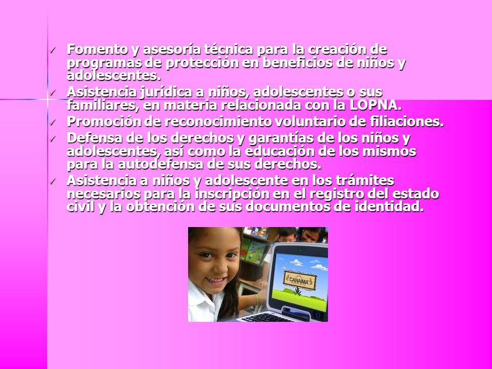 Fomento y asesoría técnica para la creación de programas de protección en beneficios de niños y adolescentes.
