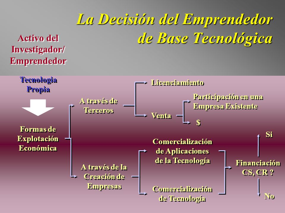 La Decisión del Emprendedor de Base Tecnológica