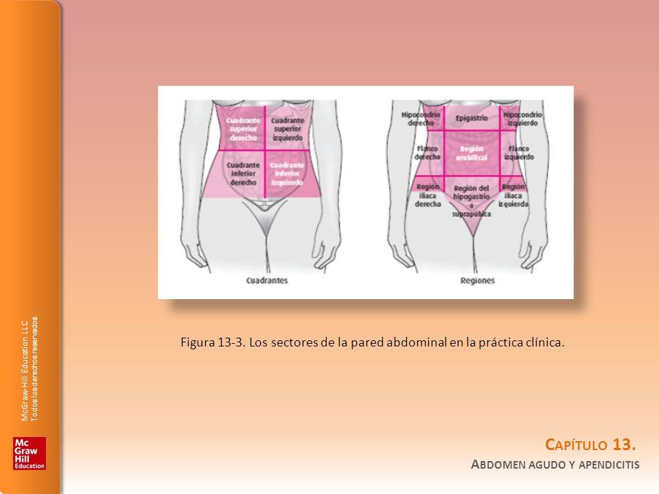 Figura 13-3. Los sectores de la pared abdominal en la práctica clínica.