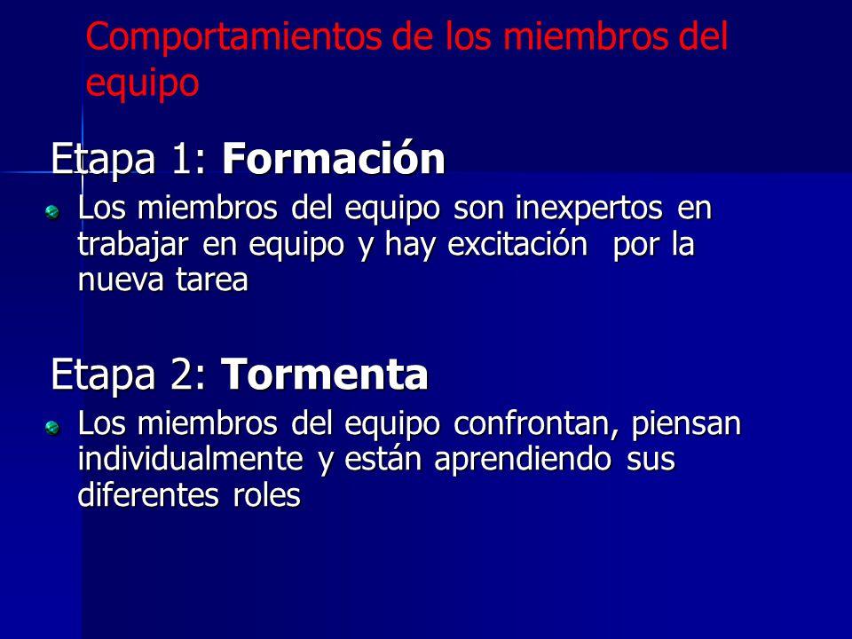Etapa 1: Formación Etapa 2: Tormenta