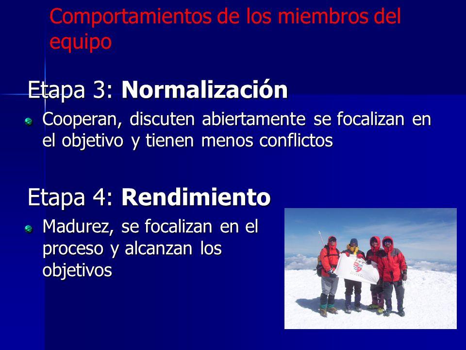 Etapa 3: Normalización Etapa 4: Rendimiento