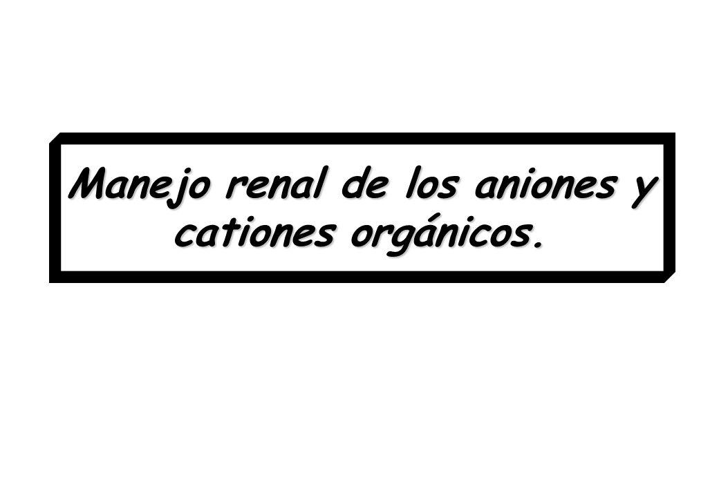 Manejo renal de los aniones y cationes orgánicos.