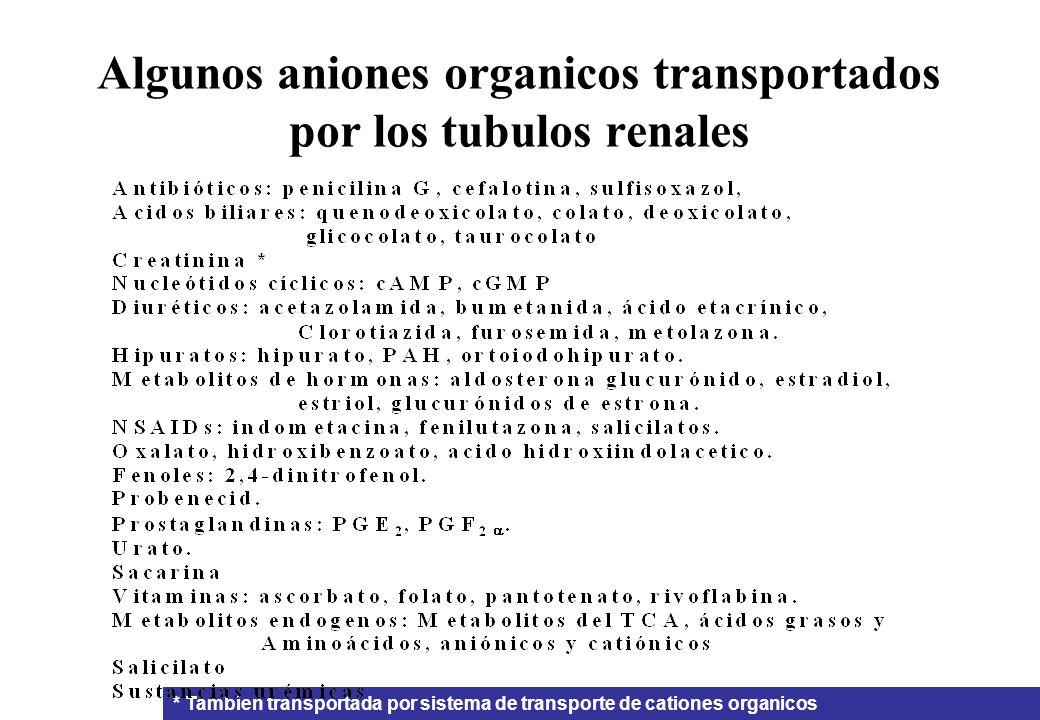 Algunos aniones organicos transportados por los tubulos renales