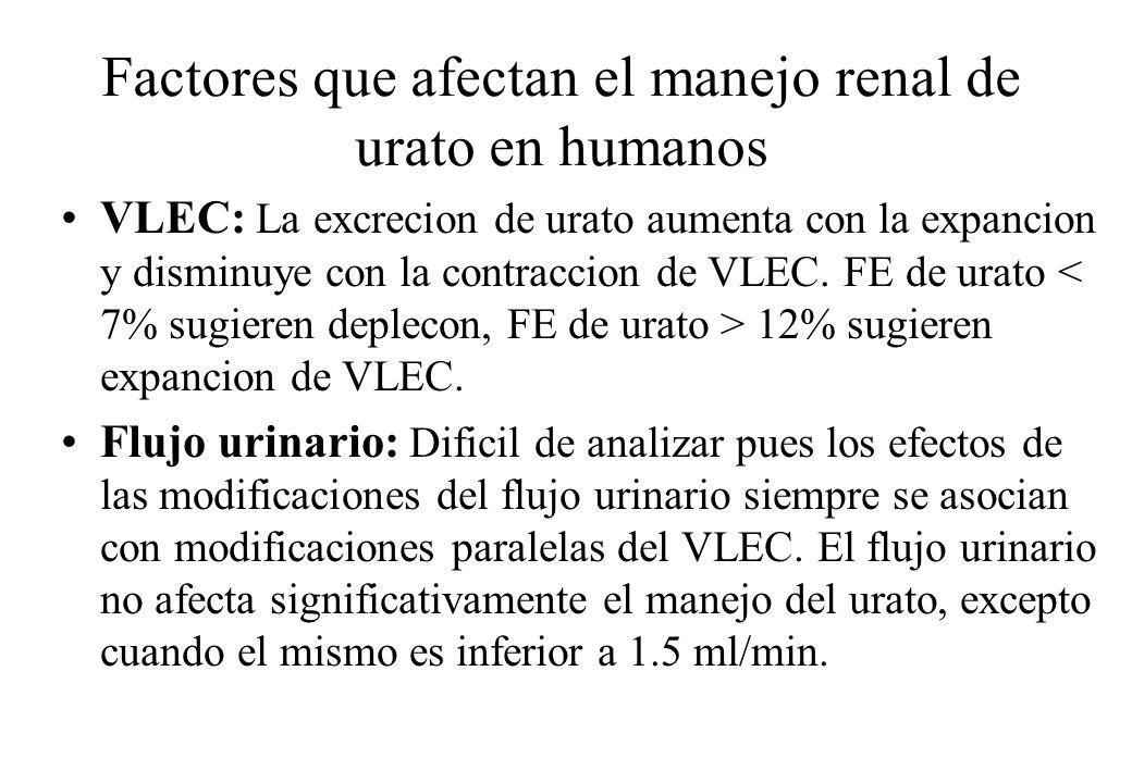 Factores que afectan el manejo renal de urato en humanos