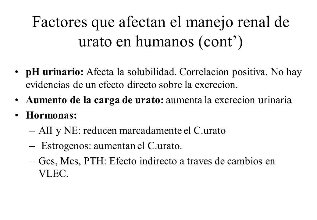 Factores que afectan el manejo renal de urato en humanos (cont')