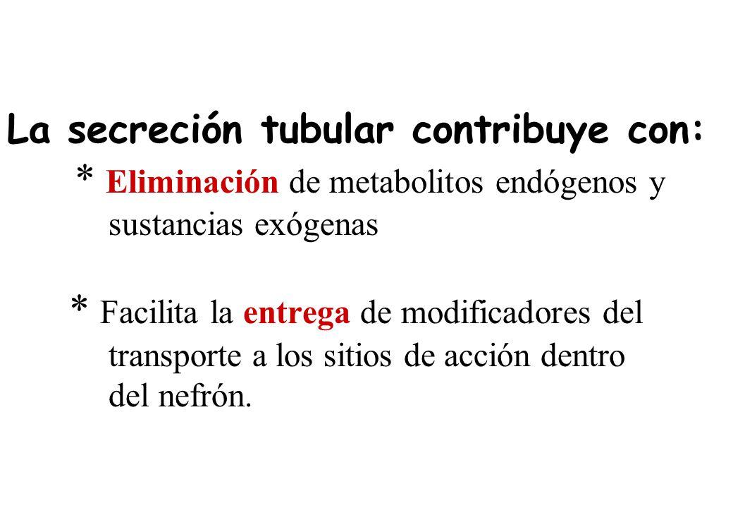 La secreción tubular contribuye con: