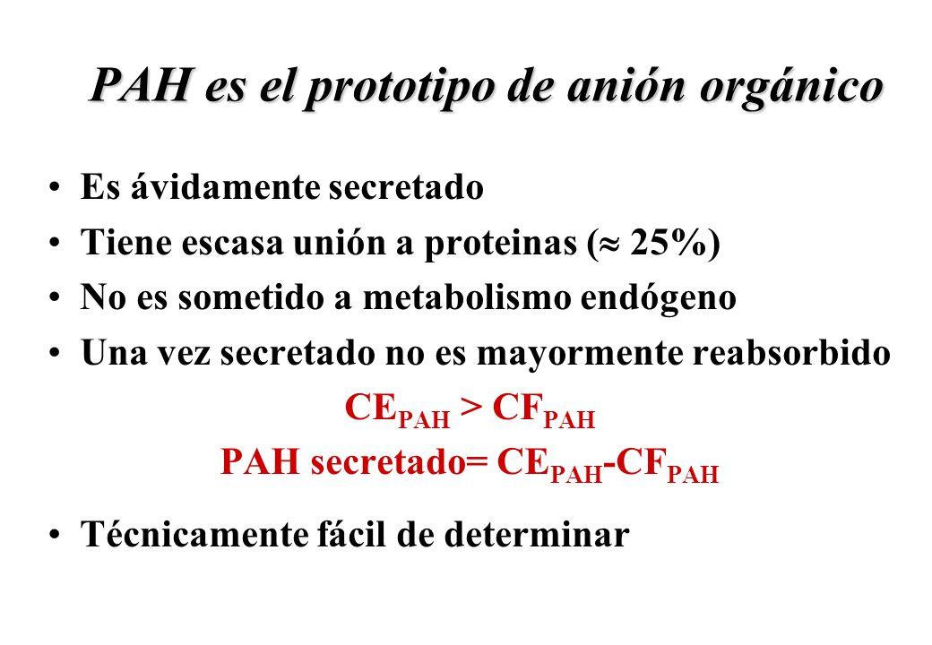 PAH es el prototipo de anión orgánico
