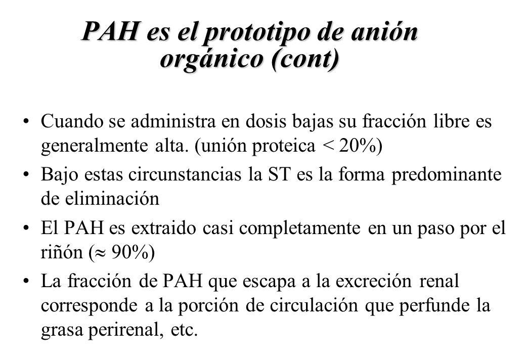 PAH es el prototipo de anión orgánico (cont)