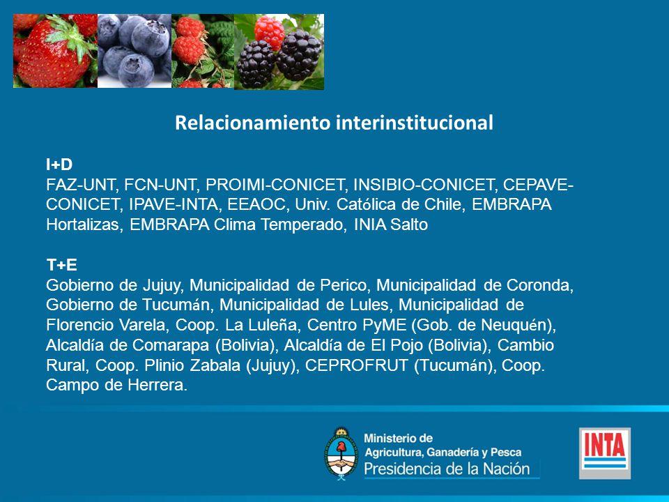 Relacionamiento interinstitucional