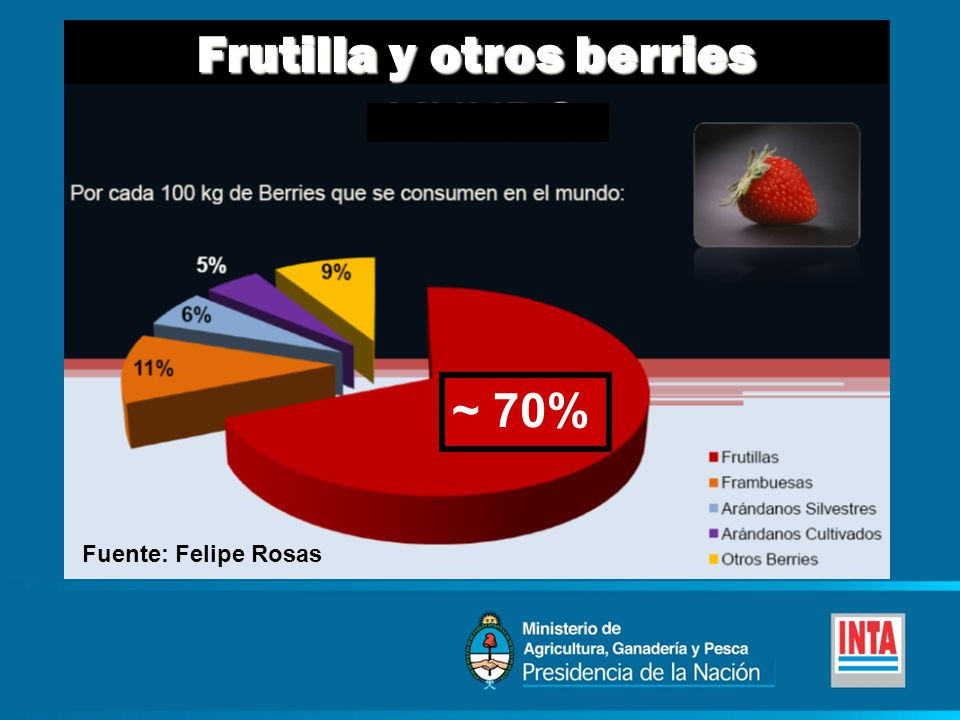 Frutilla y otros berries