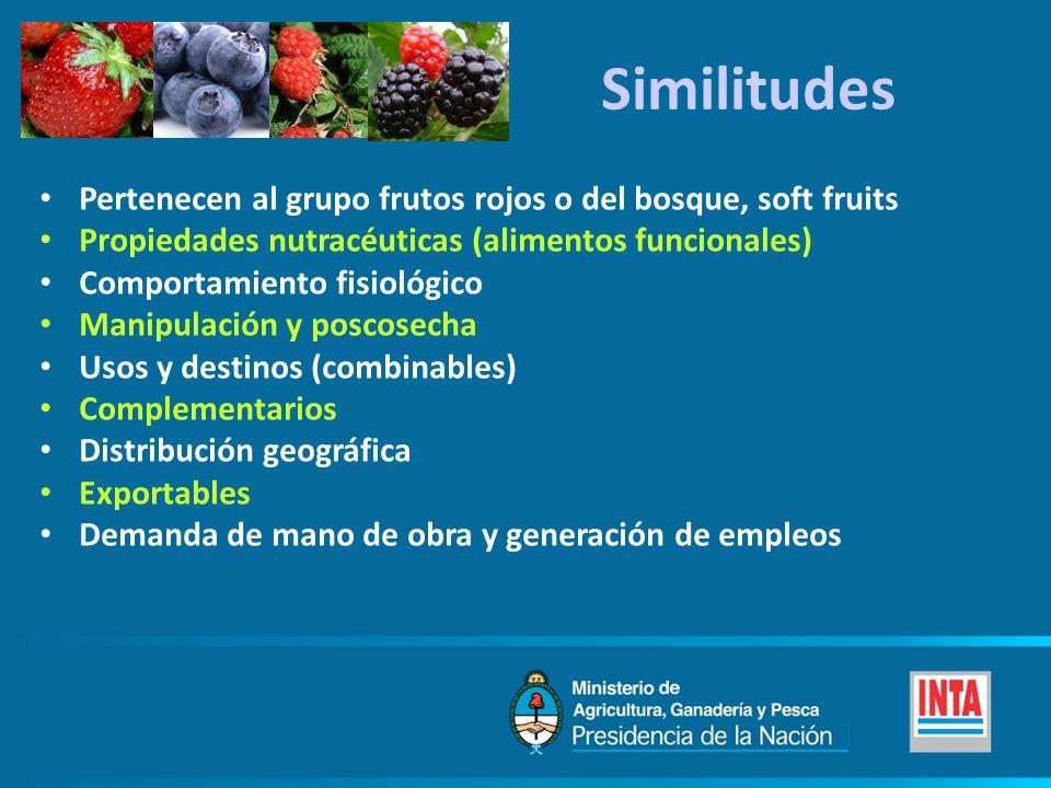 Similitudes Pertenecen al grupo frutos rojos o del bosque, soft fruits