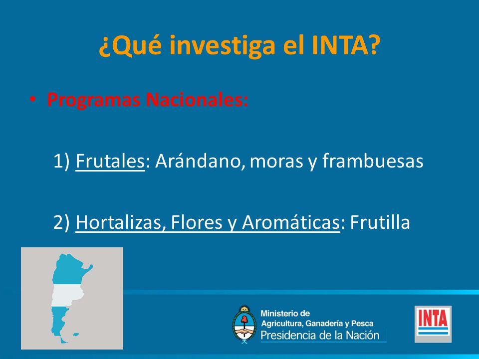 ¿Qué investiga el INTA Programas Nacionales: