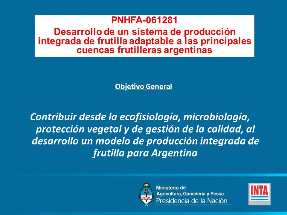 PNHFA-061281 Desarrollo de un sistema de producción integrada de frutilla adaptable a las principales cuencas frutilleras argentinas.