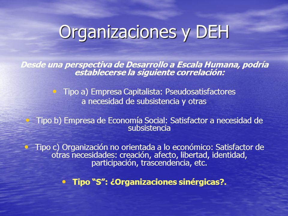 Tipo S : ¿Organizaciones sinérgicas .