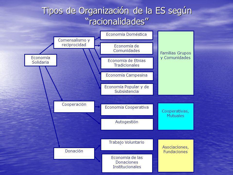 Tipos de Organización de la ES según racionalidades