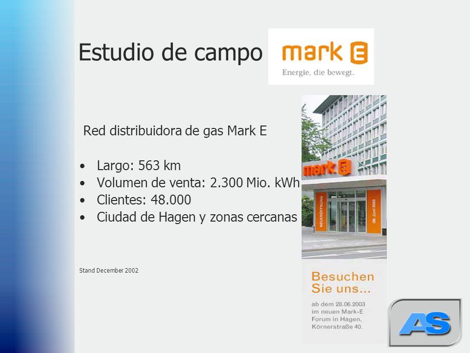 Estudio de campo Red distribuidora de gas Mark E Largo: 563 km