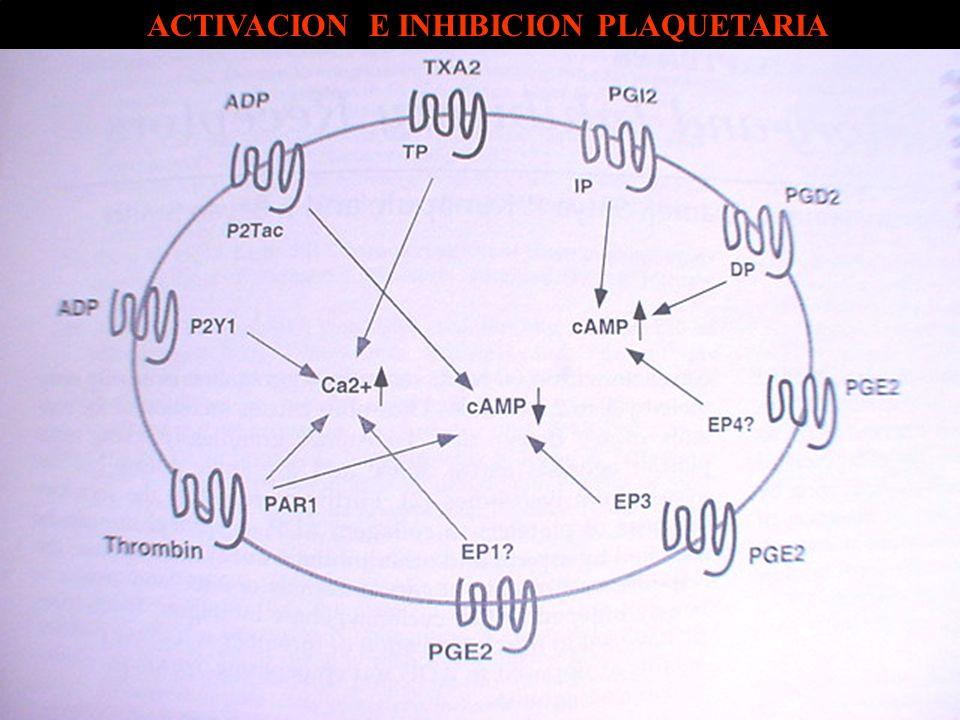 ACTIVACION E INHIBICION PLAQUETARIA