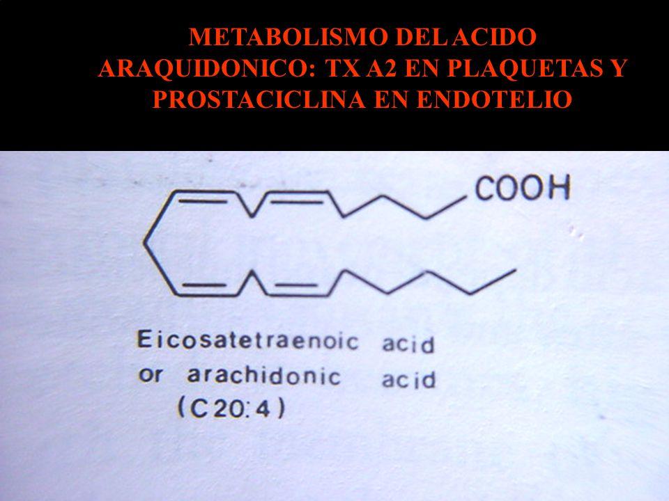 METABOLISMO DEL ACIDO ARAQUIDONICO: TX A2 EN PLAQUETAS Y PROSTACICLINA EN ENDOTELIO