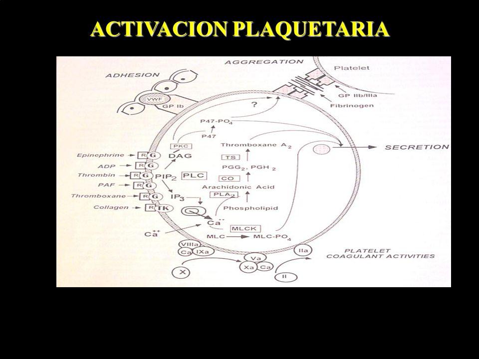 ACTIVACION PLAQUETARIA