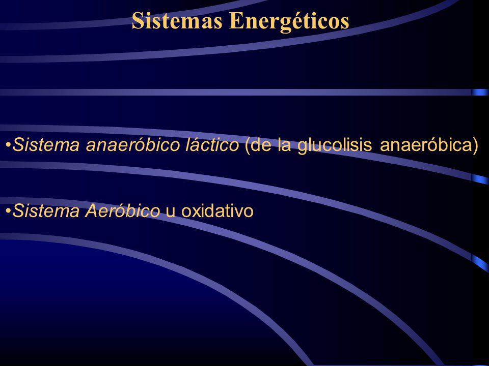 Sistemas Energéticos Sistema anaeróbico láctico (de la glucolisis anaeróbica) Sistema Aeróbico u oxidativo.