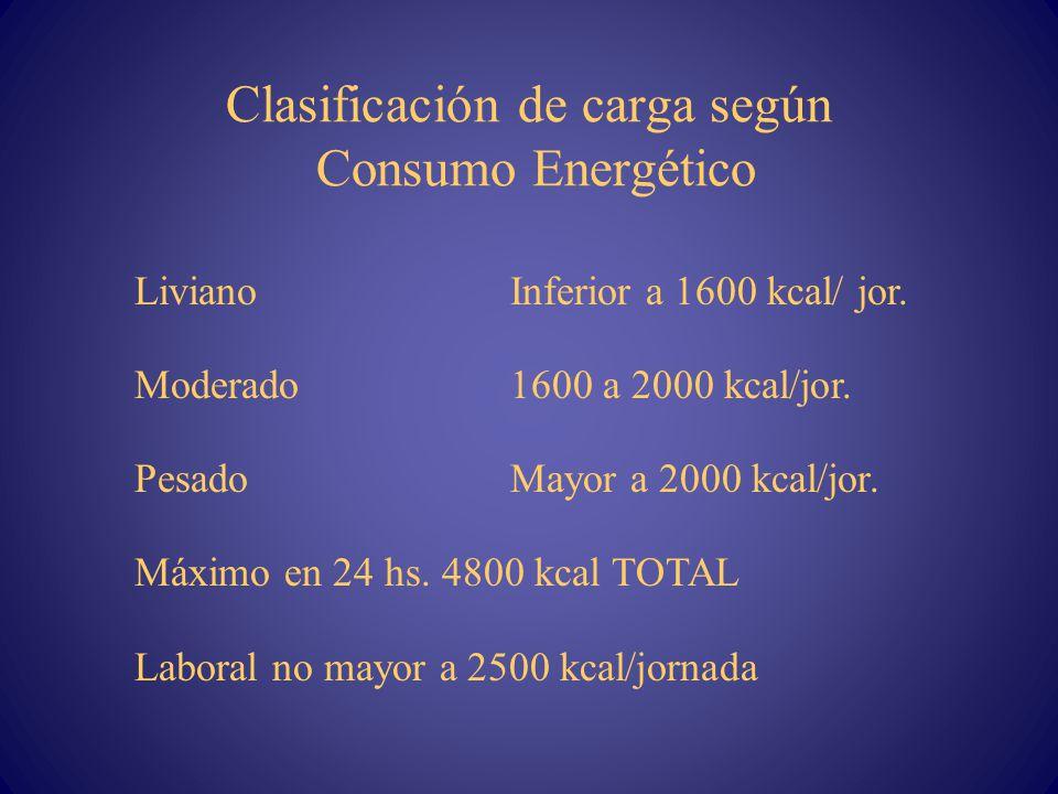 Clasificación de carga según Consumo Energético