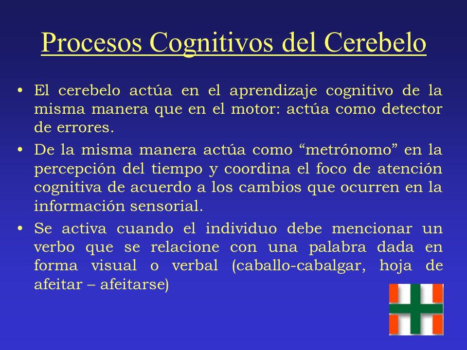 Procesos Cognitivos del Cerebelo