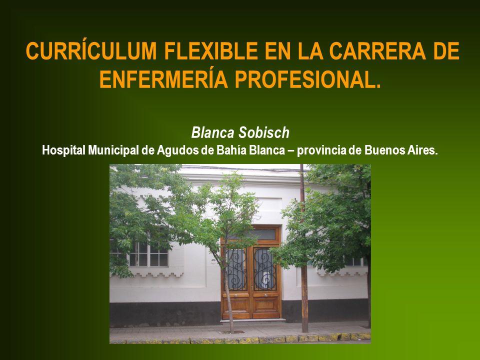 CURRÍCULUM FLEXIBLE EN LA CARRERA DE ENFERMERÍA PROFESIONAL