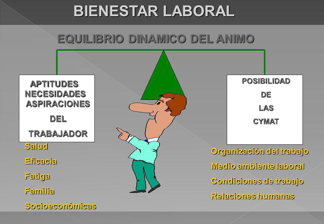 BIENESTAR LABORAL EQUILIBRIO DINAMICO DEL ANIMO APTITUDES NECESIDADES