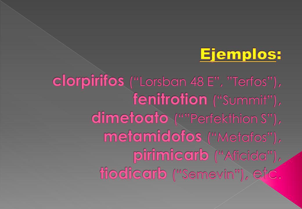 Ejemplos: clorpirifos ( Lorsban 48 E , Terfos ), fenitrotion ( Summit ), dimetoato ( Perfekthion S ), metamidofos ( Metafos ), pirimicarb ( Aficida ), tiodicarb ( Semevin ), etc.