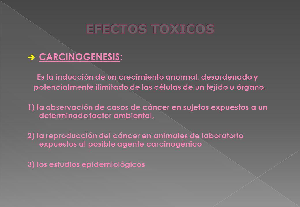 EFECTOS TOXICOS CARCINOGENESIS: