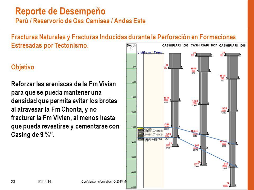 Reporte de Desempeño Perú / Reservorio de Gas Camisea / Andes Este