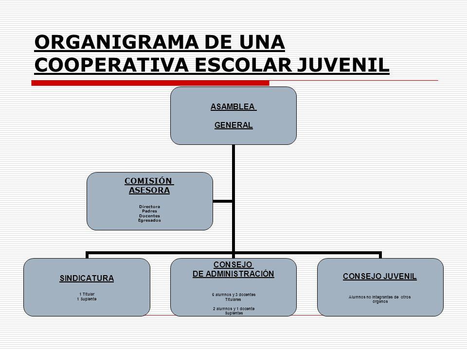 ORGANIGRAMA DE UNA COOPERATIVA ESCOLAR JUVENIL