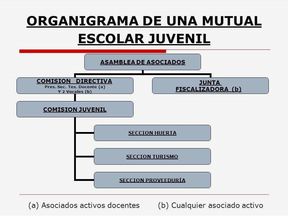 ORGANIGRAMA DE UNA MUTUAL ESCOLAR JUVENIL