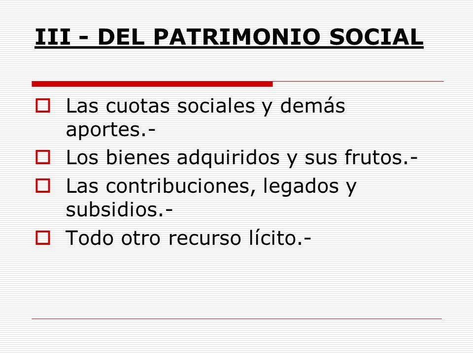 III - DEL PATRIMONIO SOCIAL
