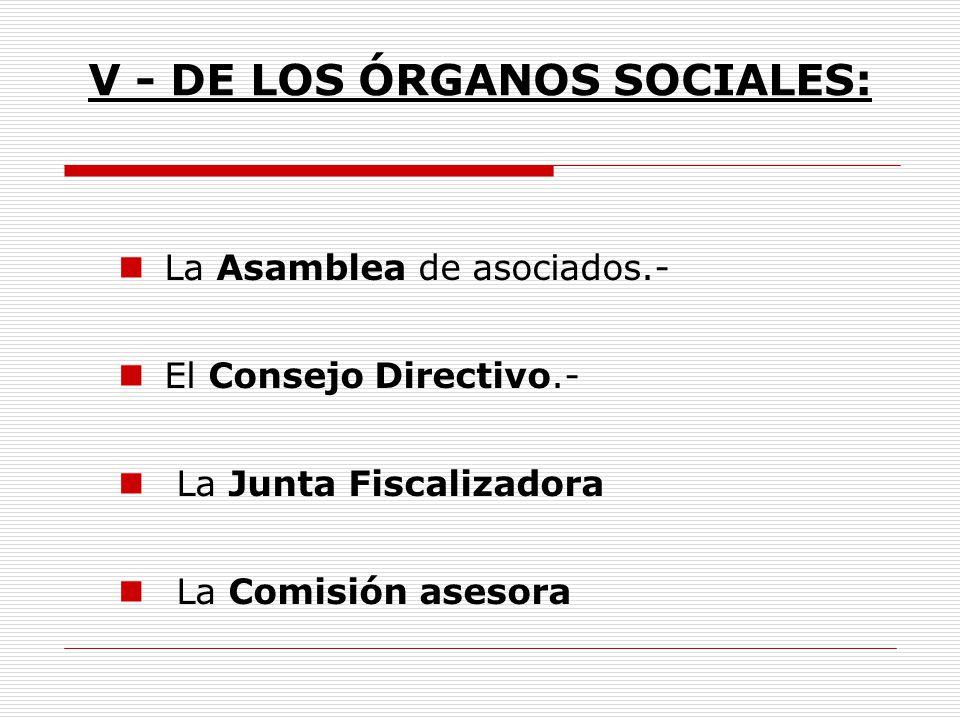 V - DE LOS ÓRGANOS SOCIALES: