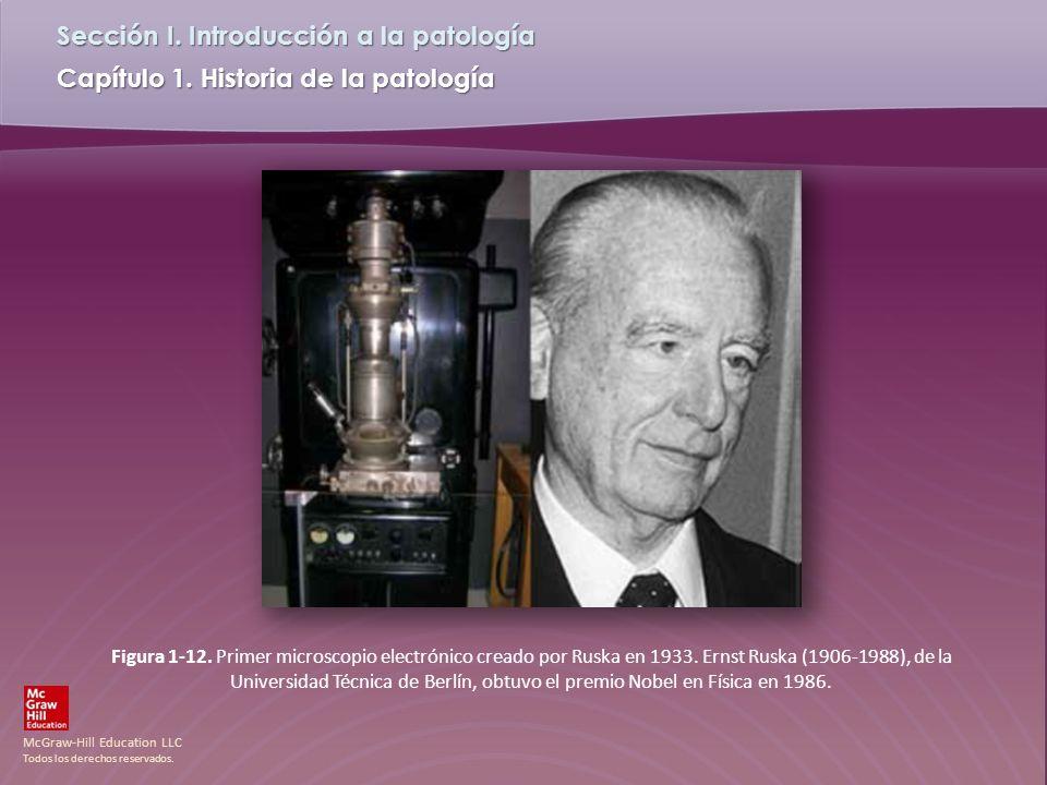 Figura 1-12. Primer microscopio electrónico creado por Ruska en 1933