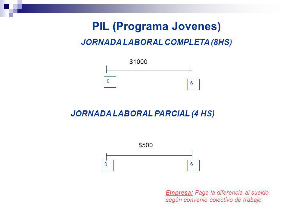 PIL (Programa Jovenes) JORNADA LABORAL COMPLETA (8HS)