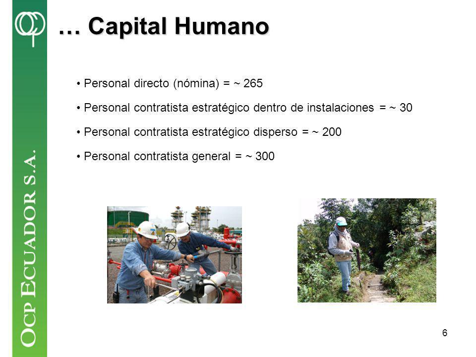 … Capital Humano Personal directo (nómina) = ~ 265