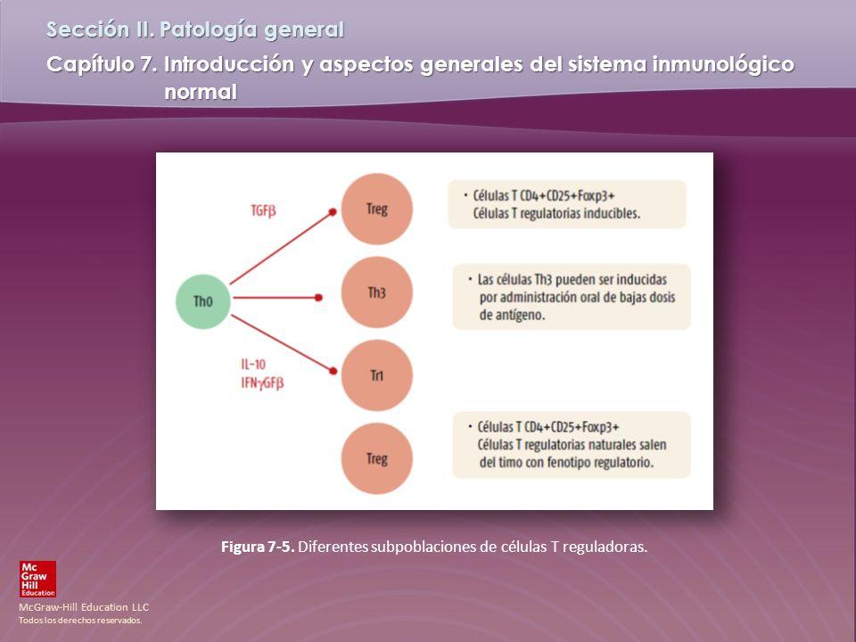 Figura 7-5. Diferentes subpoblaciones de células T reguladoras.