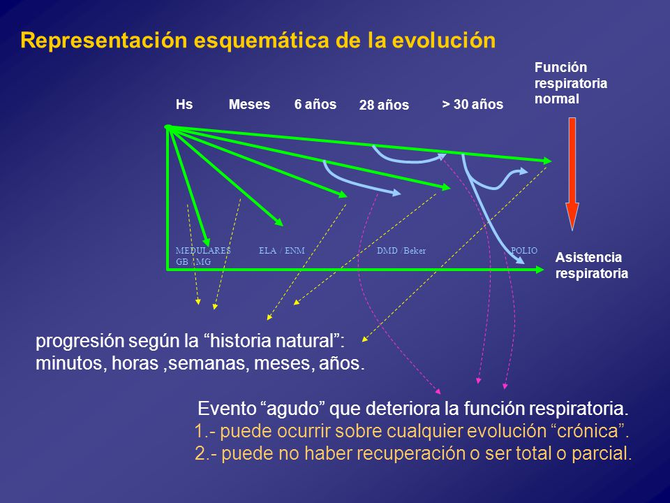 Representación esquemática de la evolución