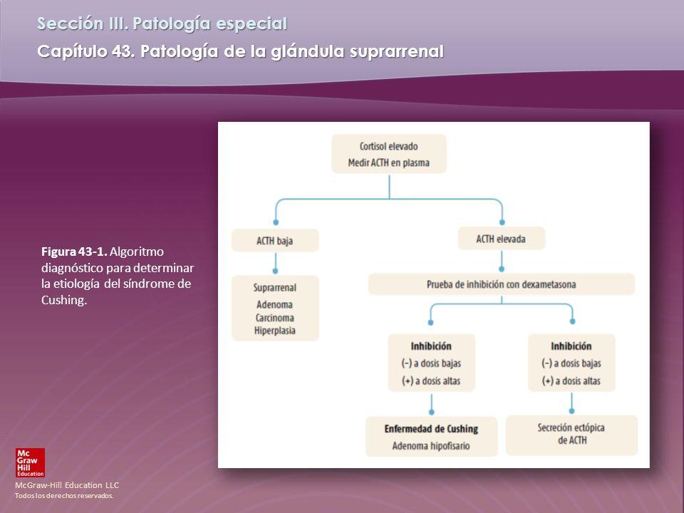 Figura 43-1. Algoritmo diagnóstico para determinar la etiología del síndrome de Cushing.