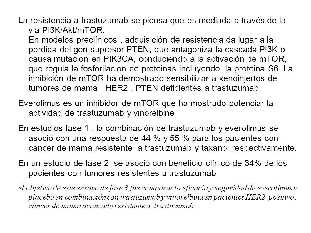 La resistencia a trastuzumab se piensa que es mediada a través de la via PI3K/Akt/mTOR. En modelos preclínicos , adquisición de resistencia da lugar a la pérdida del gen supresor PTEN, que antagoniza la cascada PI3K o causa mutacion en PIK3CA, conduciendo a la activación de mTOR, que regula la fosforilacion de proteinas incluyendo la proteina S6. La inhibición de mTOR ha demostrado sensibilizar a xenoinjertos de tumores de mama HER2 , PTEN deficientes a trastuzumab
