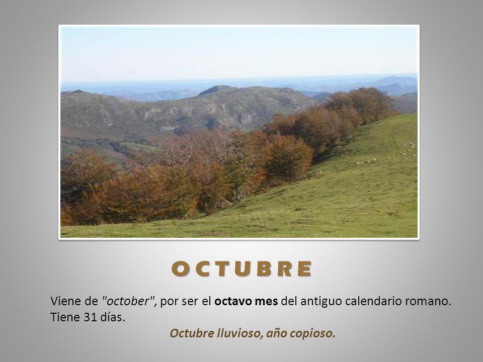 Octubre lluvioso, año copioso.