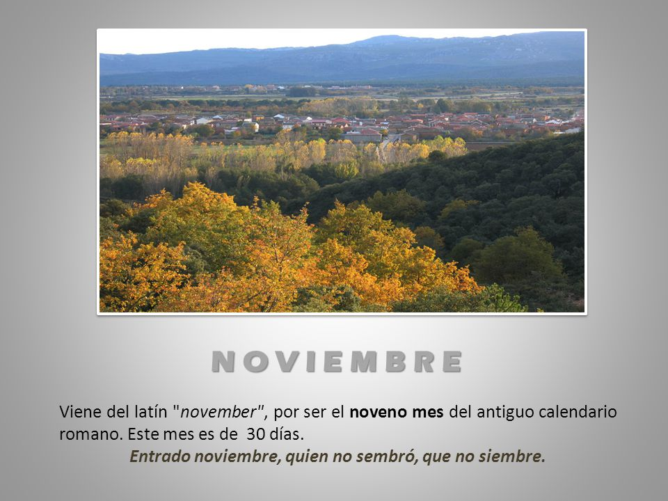 Entrado noviembre, quien no sembró, que no siembre.