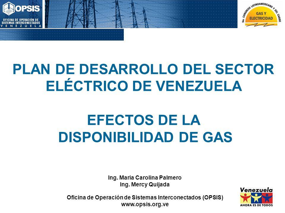 PLAN DE DESARROLLO DEL SECTOR ELÉCTRICO DE VENEZUELA