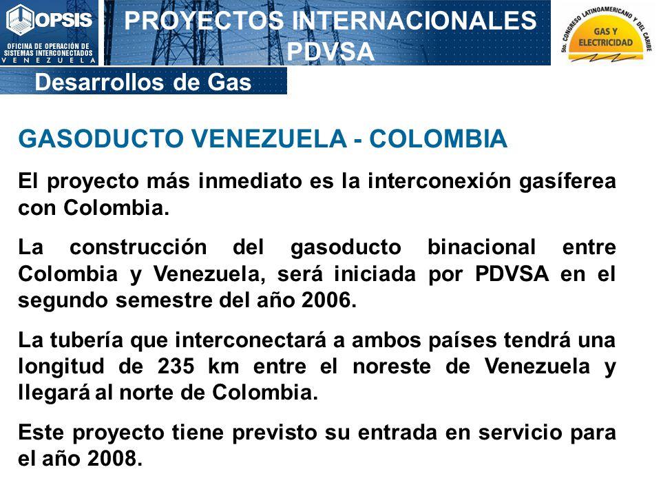 PROYECTOS INTERNACIONALES PDVSA