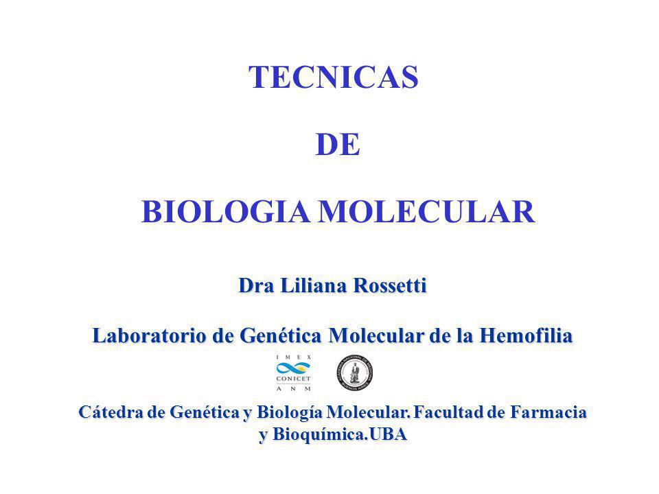 Laboratorio de Genética Molecular de la Hemofilia